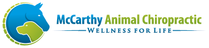 McCarthy Animal Chiropractic